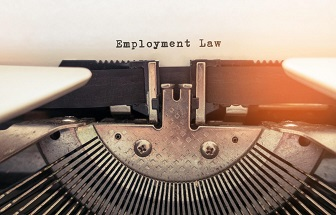 Image result for Employment Lawyers